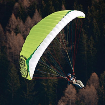 Bobcat Gin Speedflying Paraglider