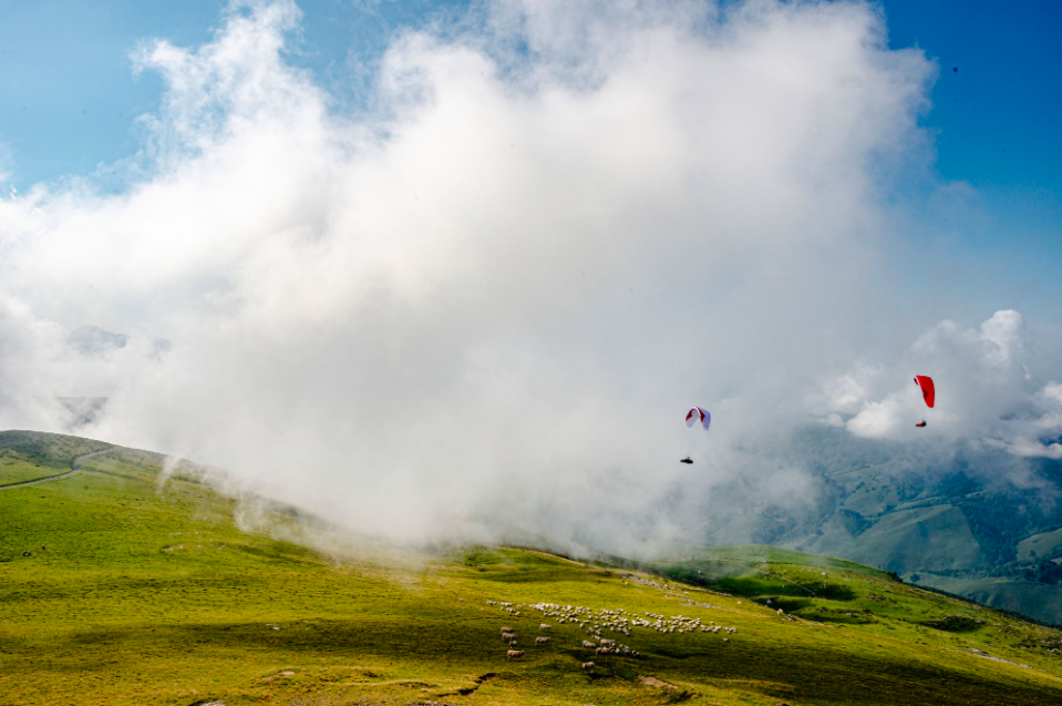 Camino Paraglider from Gin